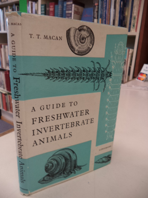 Image for A Guide to Freshwater Invertebrate Animals