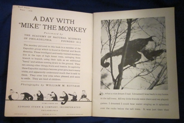 Image for A Day With Mike The Monkey