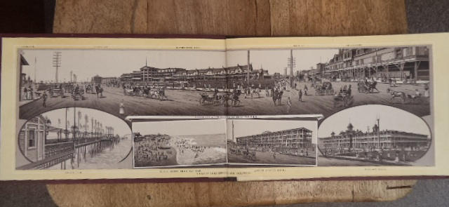 Image for Views of Long Branch and Hollywood [ Hotel New Jersey ]