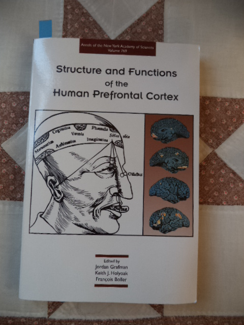 Image for Structure and Functions of the Human Prefrontal Cortex (Annals of the New York Academy of Sciences ; Vol. 769)