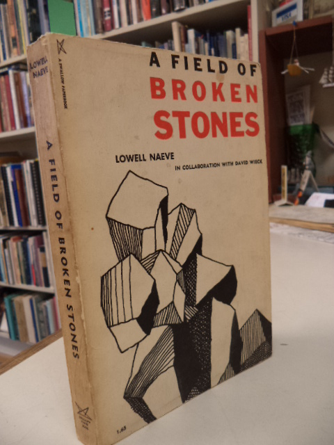 Image for A Field of Broken Stones