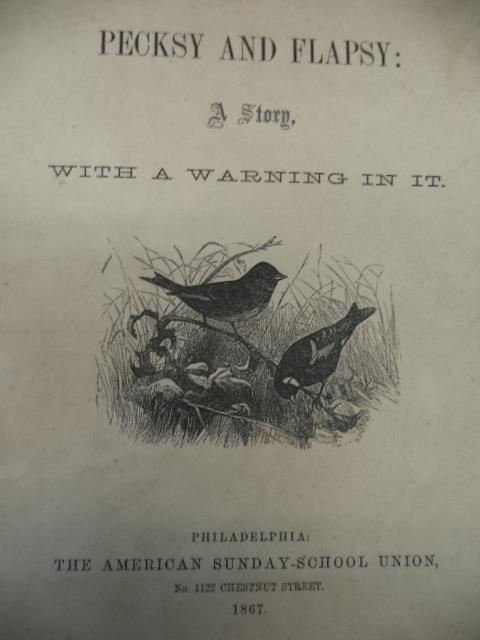 Image for Pecksy and Flapsy [The American Sunday School Union, 1867]