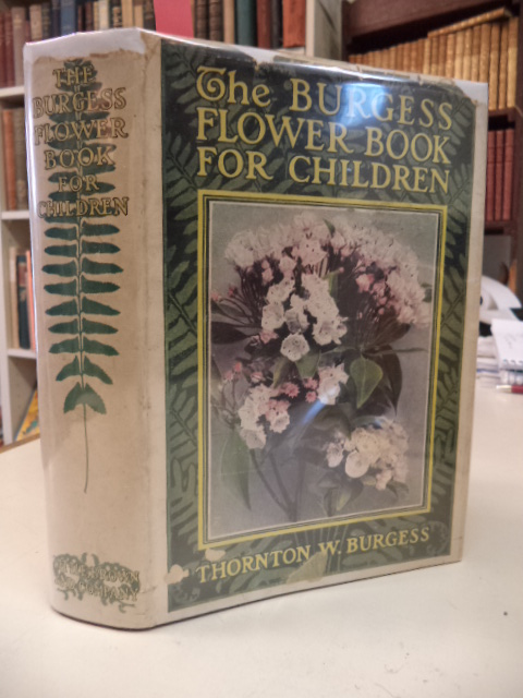Image for The Burgess Flower Book For Children
