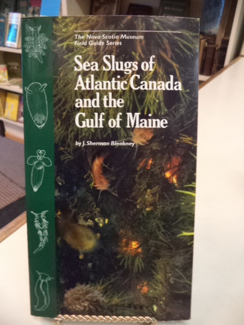Image for Sea Slugs of Atlantic Canada and the Gulf of Maine