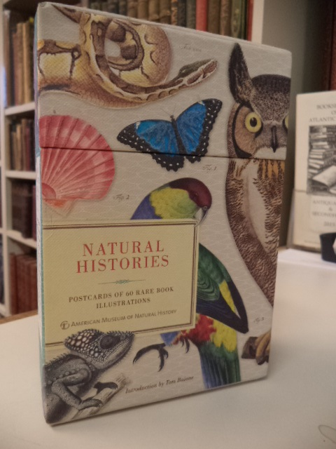 Image for Natural Histories: Postcards of 60 Rare Book Illustrations