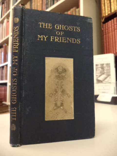 Image for The Ghosts of My Friends